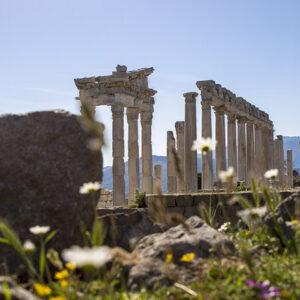 A Visit To Pergamum