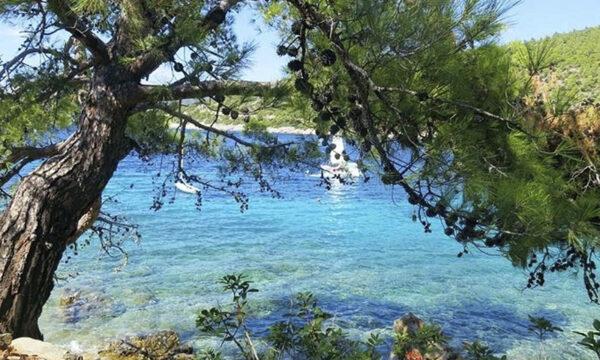 Греческие Острова & Бодрум